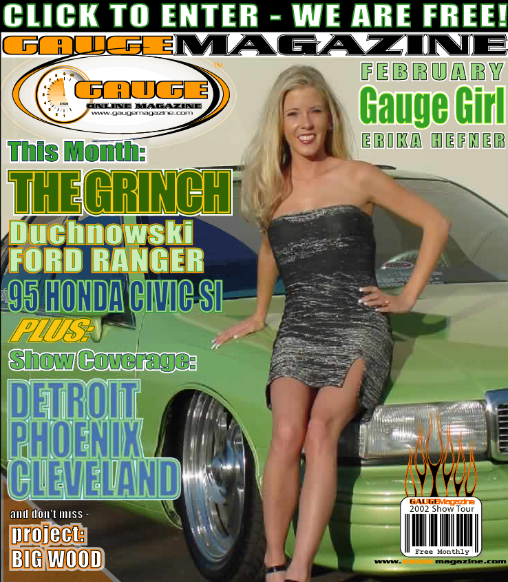 Gauge Magazine Issue - February 2002