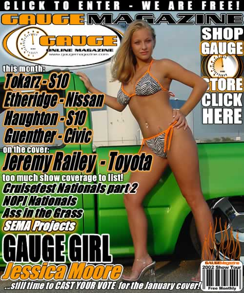 Gauge Magazine Issue - November 2002