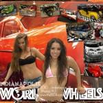 Indianapolis World of Wheels 2010