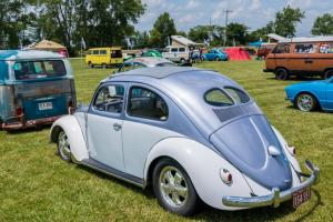 VW-funfest-2018 (123)