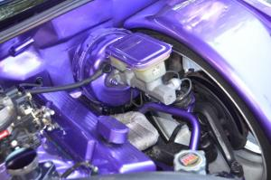 Grayson Rigsby purple s10 truck (33)